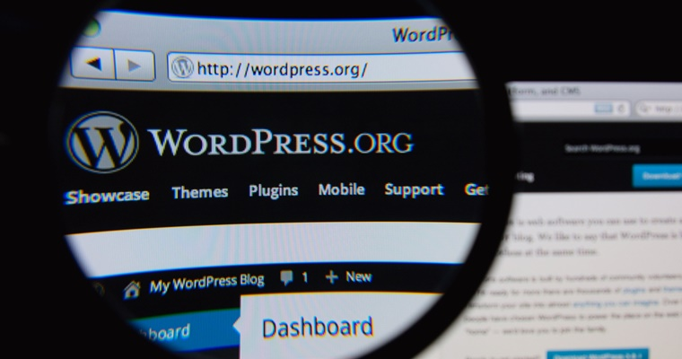Actualizare WordPress